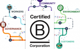 Empresas B